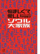 悩ましくて愛しいソウル大家族(講談社+α文庫)