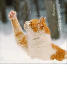 そっとネコぼけ 岩合光昭写真集