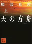天の方舟(上)(講談社文庫)