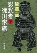 影武者徳川家康(下)