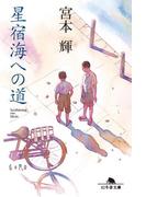 星宿海への道(幻冬舎文庫)