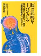 脳は悲鳴を上げている 頭痛、めまい、耳鳴り、不眠は「脳過敏症候群」が原因だった!?(講談社+α新書)