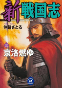 新 戦国志 3(学研M文庫)