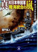 真・大日本帝国軍 陸海統合の嵐3(学研M文庫)