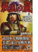 戦国の嵐 3 吉田城争奪戦! (歴史群像新書)(歴史群像新書)