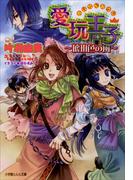愛玩王子4 ~琥珀色の風~(ルルル文庫)