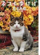 ネコと歩けば (ニッポンの猫写真集)