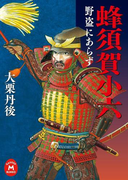 蜂須賀小六 野盗にあらず(学研M文庫)