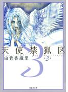 天使禁猟区(3)(白泉社文庫)