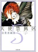 天使禁猟区(5)(白泉社文庫)