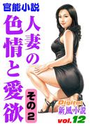 人妻の色情と愛欲 その2(Digital新風小説)