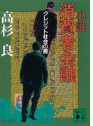 小説 消費者金融クレジット社会の罠(講談社文庫)