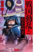 戦国動乱2(歴史群像新書)