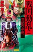 戦国動乱3(歴史群像新書)