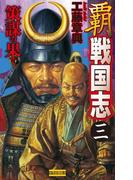 覇 戦国志3(歴史群像新書)