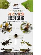 身近な昆虫識別図鑑 見わけるポイントがよくわかる (フィールドガイド)