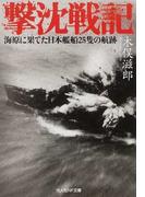 撃沈戦記 海原に果てた日本艦船25隻の航跡