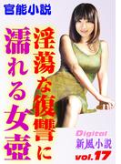 淫蕩な復讐に濡れる女壺(Digital新風小説)