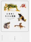 ときめくカエル図鑑
