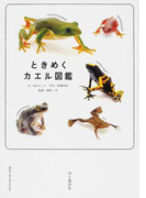 ときめくカエル図鑑 (Book for discovery)(ときめく図鑑Book for Discovery)