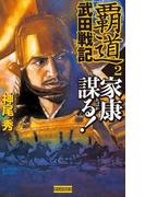 覇道武田戦記2(歴史群像新書)