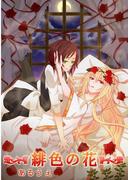 緋色の花(百合缶)