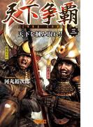 天下争覇3(歴史群像新書)