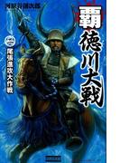 覇 徳川大戦2(歴史群像新書)