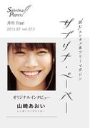 サブリナ・ペーパー vol.013