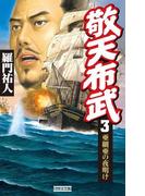 敬天布武 3(歴史群像新書)