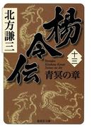 楊令伝 十三 青冥の章(集英社文庫)