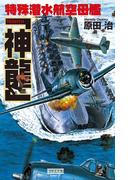 特殊潜水航空母艦「神龍」(歴史群像新書)
