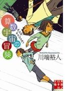 算数宇宙の冒険(実業之日本社文庫)