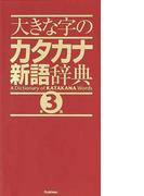 大きな字のカタカナ新語辞典 第3版