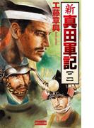 新 真田軍記 2(歴史群像新書)