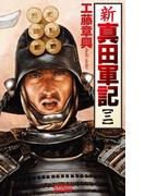 新 真田軍記 3(歴史群像新書)