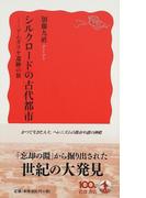シルクロードの古代都市 アムダリヤ遺跡の旅 (岩波新書 新赤版)(岩波新書 新赤版)