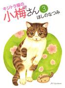 キジトラ猫の小梅さん(3)(ねこぱんちコミックス)