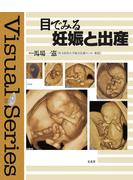 目でみる妊娠と出産