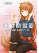 狼と香辛料XI Side Colors II(電撃文庫)