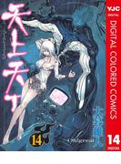 天上天下 カラー版 14(ヤングジャンプコミックスDIGITAL)