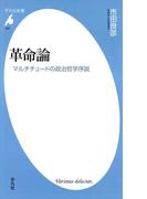 革命論(平凡社新書)