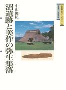 沼遺跡と美作の弥生集落(吉備考古ライブラリィ)