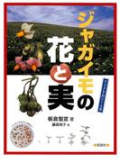 ジャガイモの花と実(オリジナル入門シリーズ)