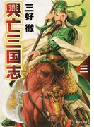興亡三国志 三(集英社文庫)