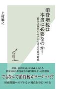 消費増税は本当に必要なのか?~借金と歳出のムダから考える日本財政~(光文社新書)