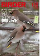 BIRDER 2014年 1月号