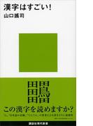 漢字はすごい!(講談社現代新書)