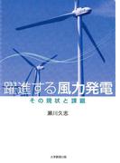 躍進する風力発電 : その現状と課題