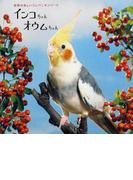 インコちゃんオウムちゃん 世界の美しいコンパニオンバード